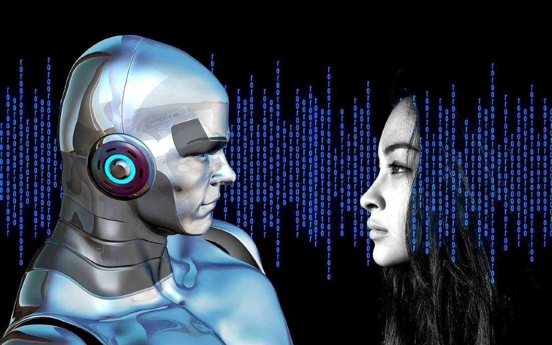 machine vs human IQ test