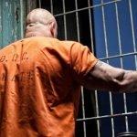 role of the parole officer - prisoner in orange garb