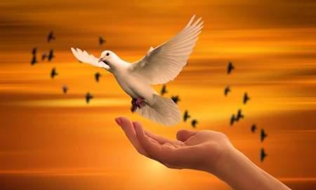 222 Angel Number in Relationships